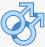 Entrar al Chat Gay de España